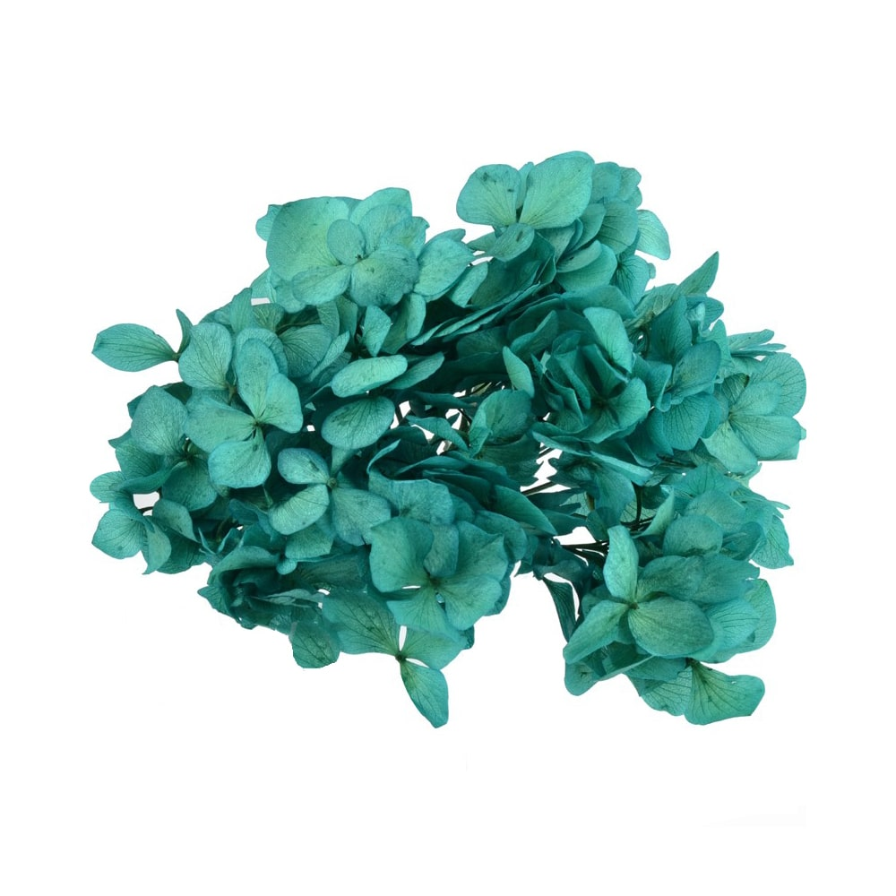 Ramillete Hortensia preservada verde mar