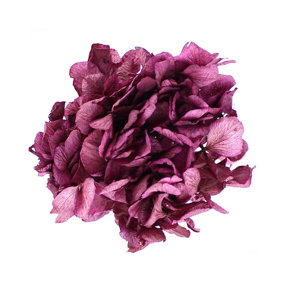 Ramillete Hortensia preservada vino
