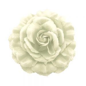 Rosa de tela blanco