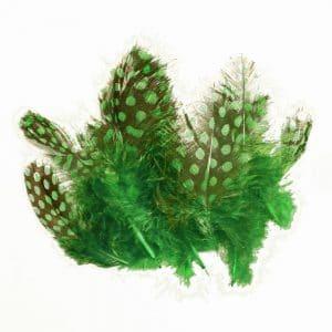 bolsa plumas guinea 10 cm verde jungla