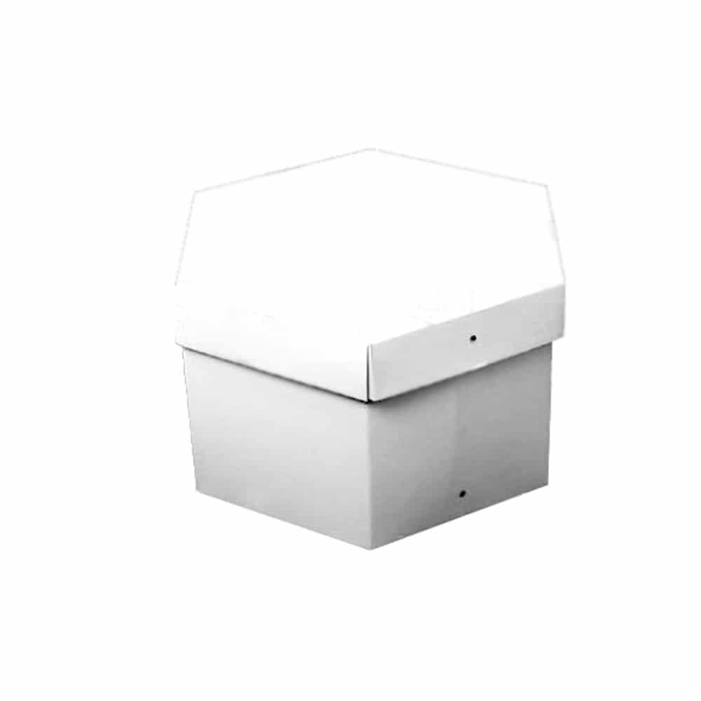 caja blanca 20x12 blanco