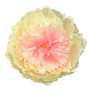 flor Cristie crudo
