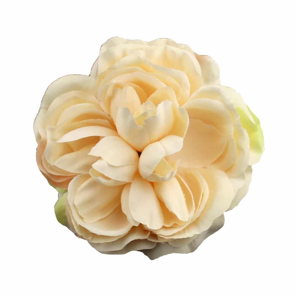 flor amanda crudo