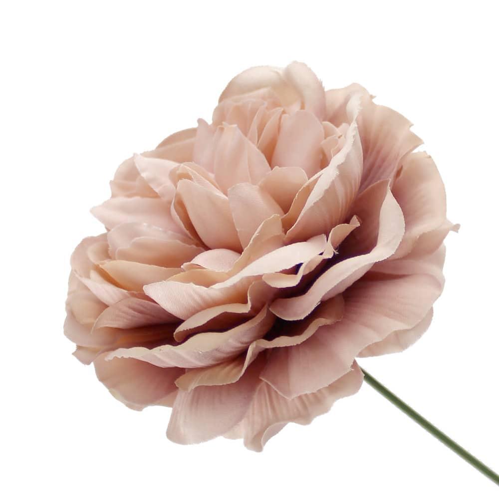 flor amanda rosa nude