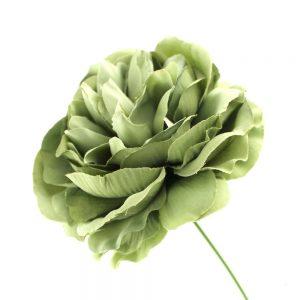 flor amanda verde empolvado