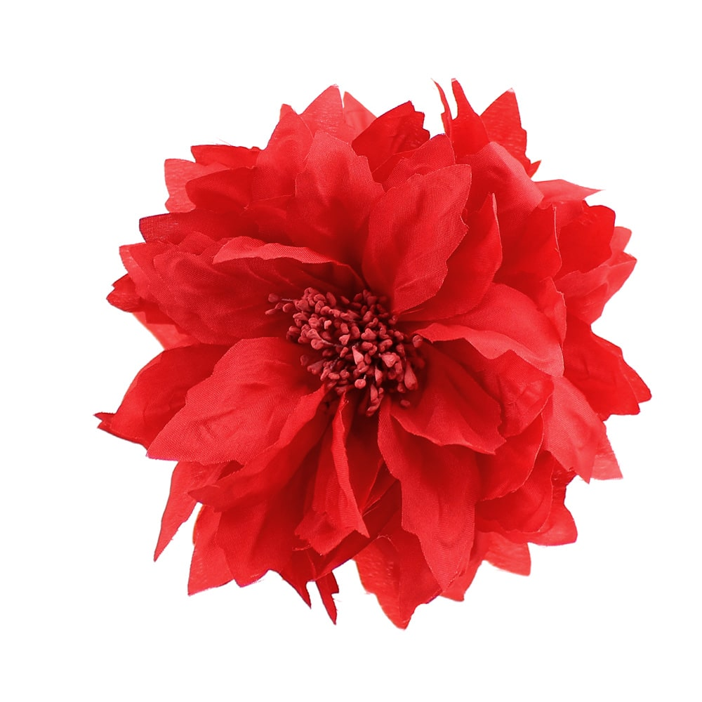 flor andrea rojo