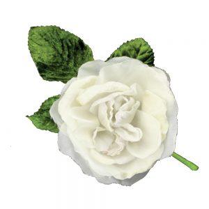 flor antares blanco roto