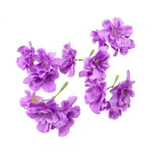 flor celia malva