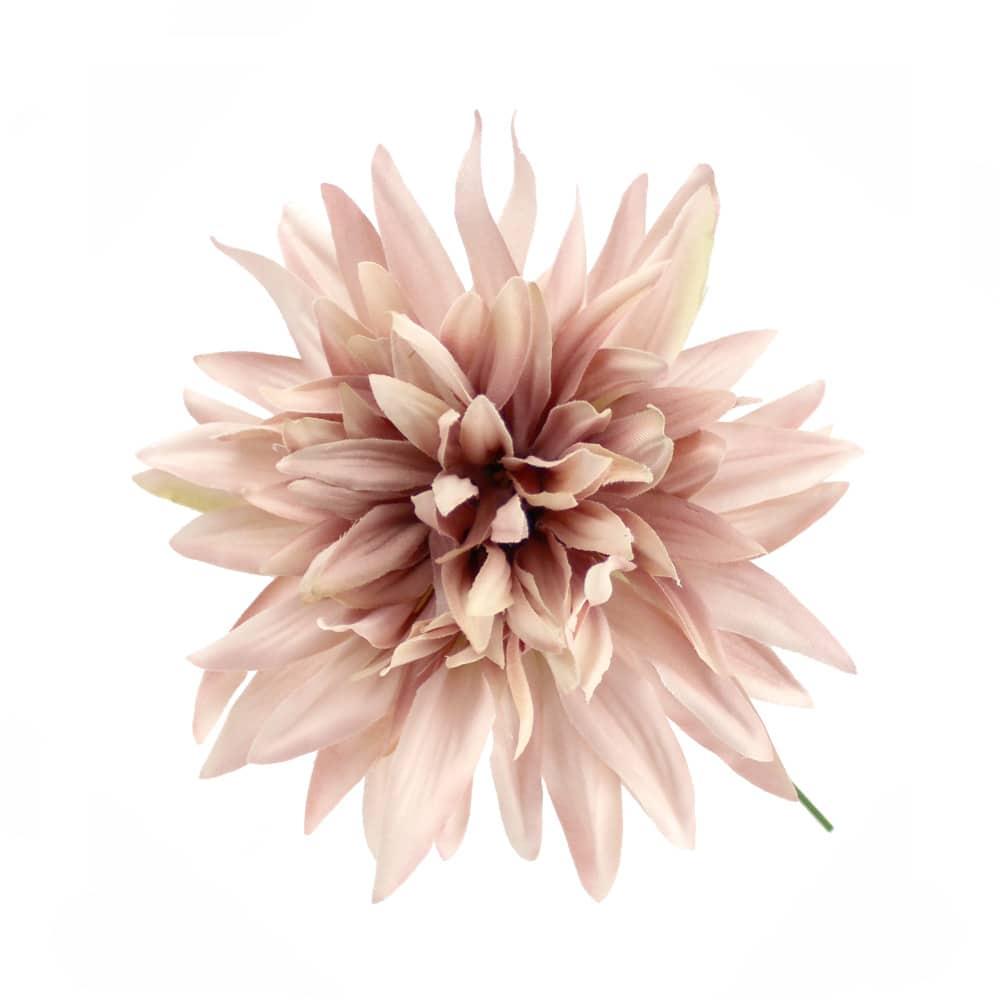 flor dalia teodora rosa nude