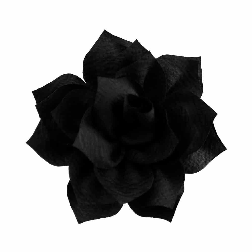 flor stella negro