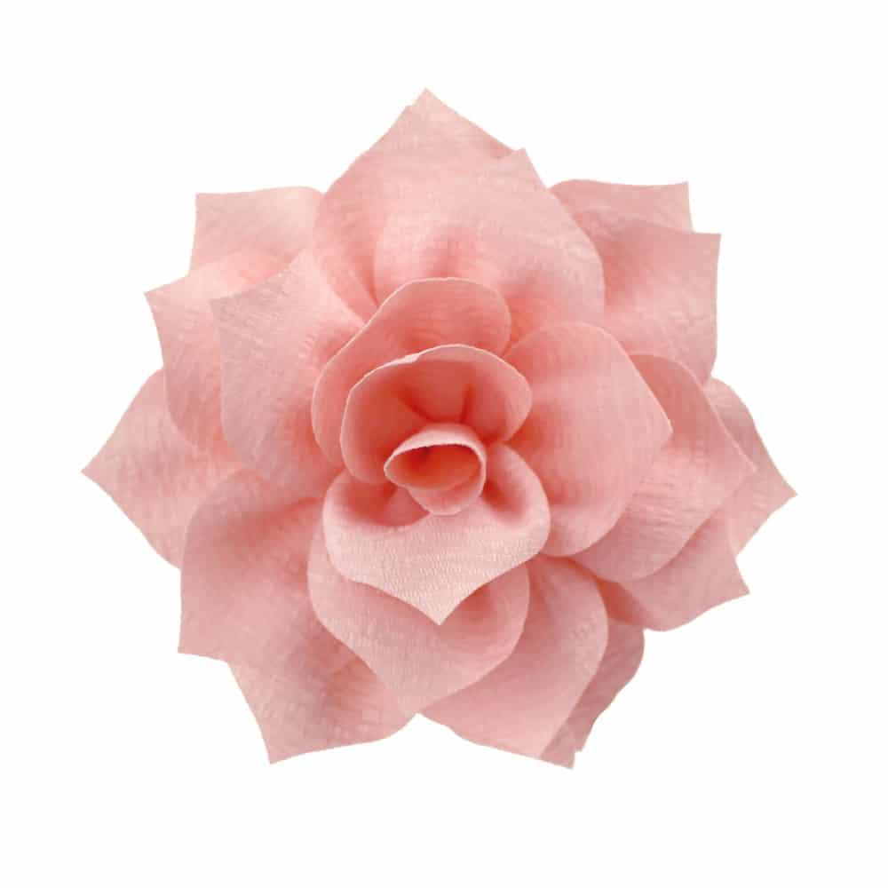 flor stella rosa