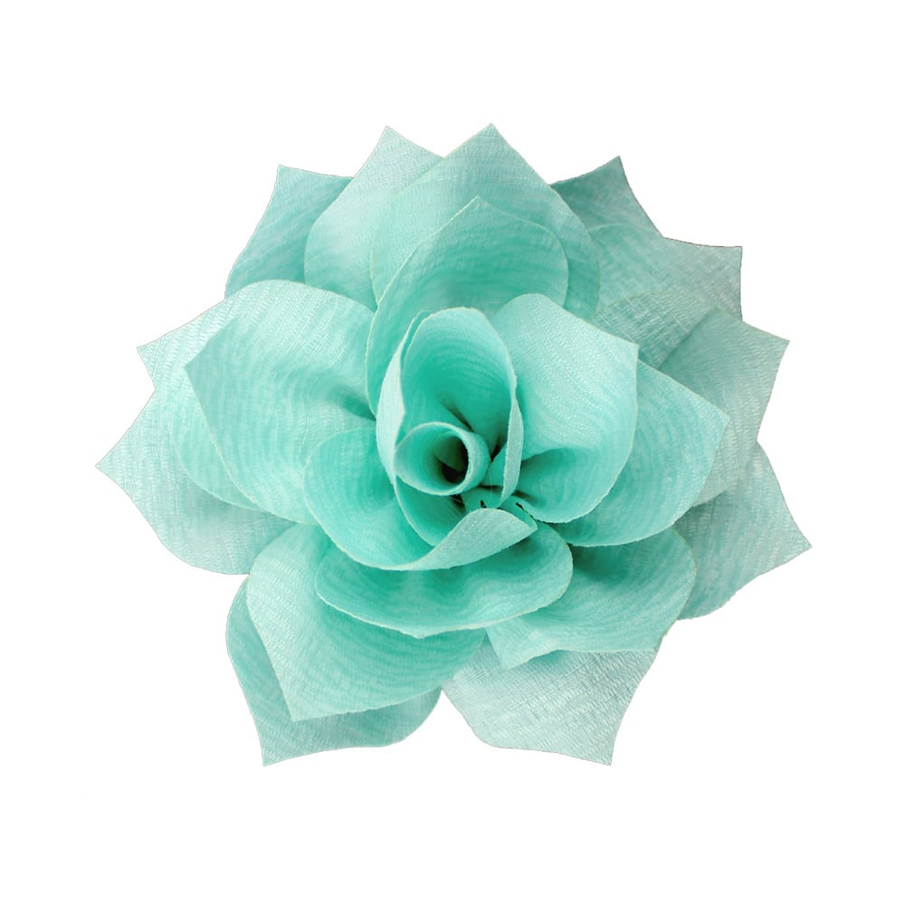 flor stella verde agua