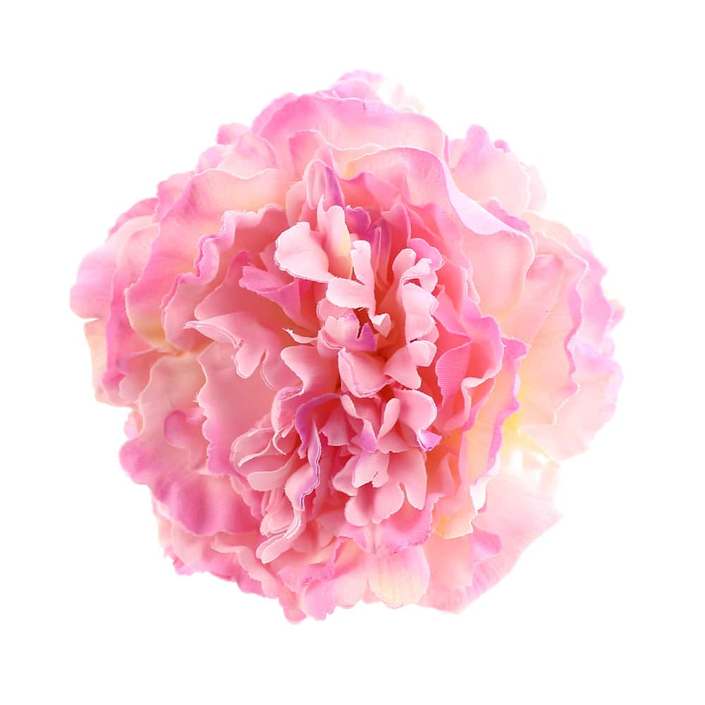 peonia esther rosa 2