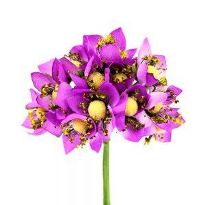ramillete 12 flores 10×8 cm buganvilla