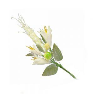 ramillete fruta y flor blanco roto