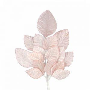 ramillete hojas dafne rosa palo