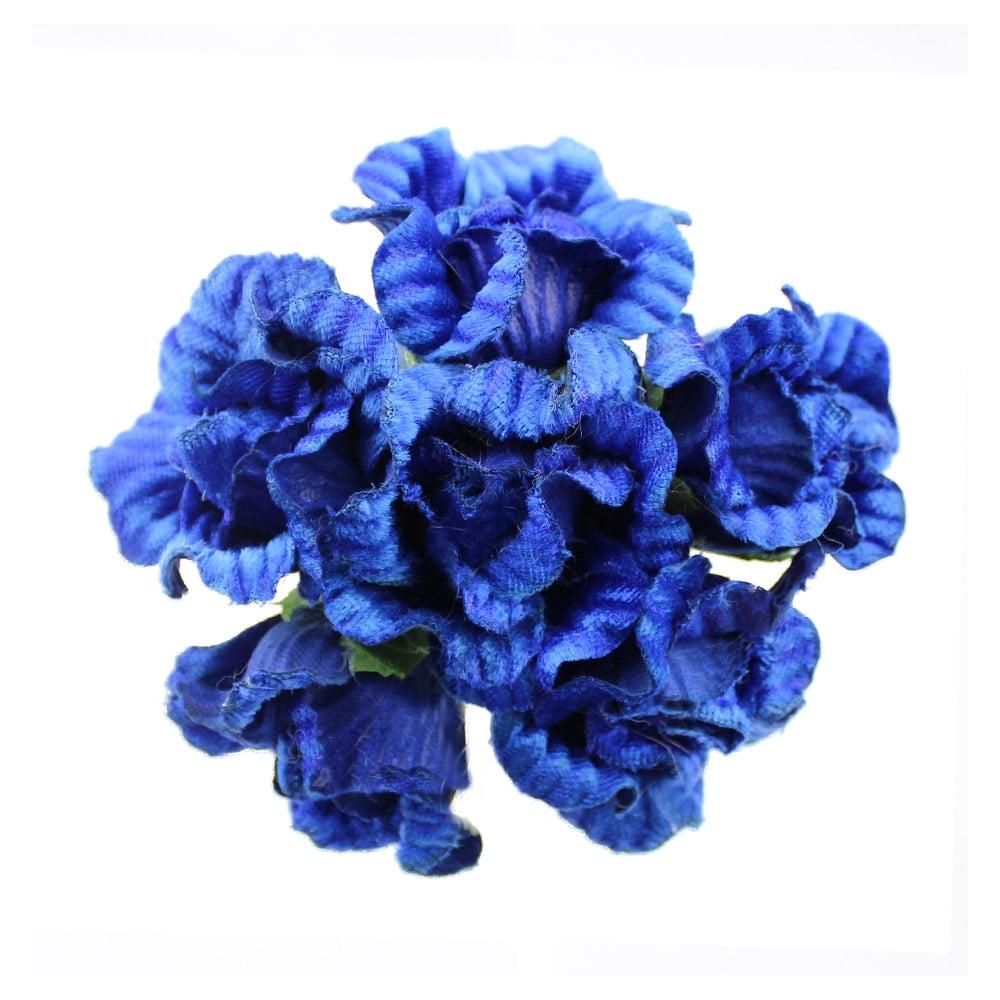 ramillete ory azul klein