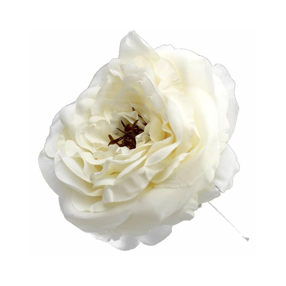 rosa evelyn crudo