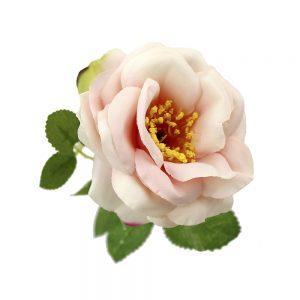 rosa nancy 8 cm salmon