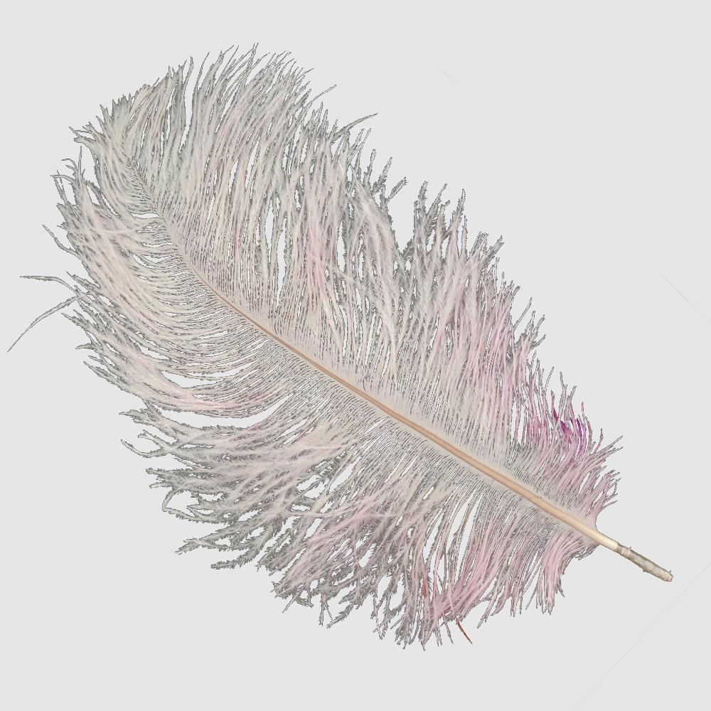 Plumas avestruz 15 20 cm rosa