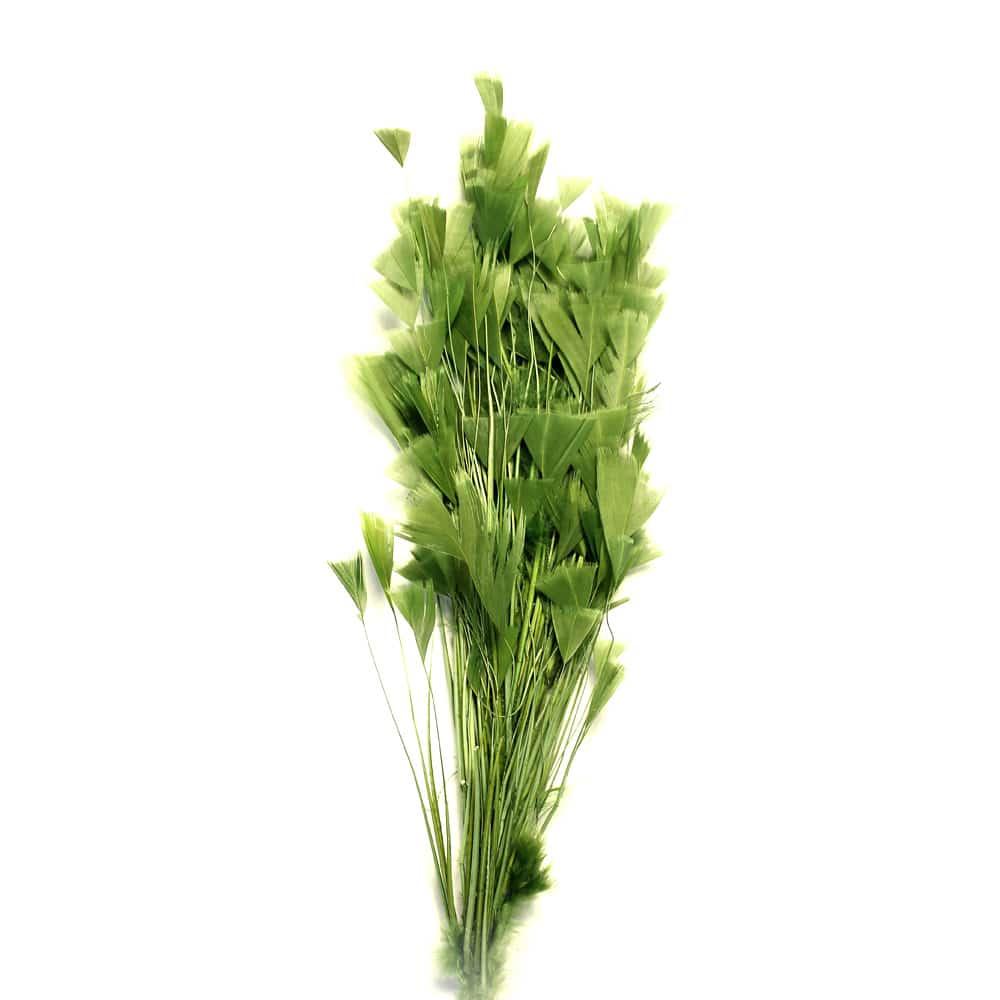 pomo belle epoque verde oliva